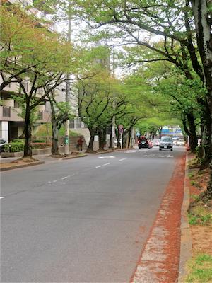 石割桜酵母のパン屋さん/Bio  Complet(ビオ コンプレ)〜たまプラーザ